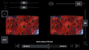 VaR's VR Player PRO